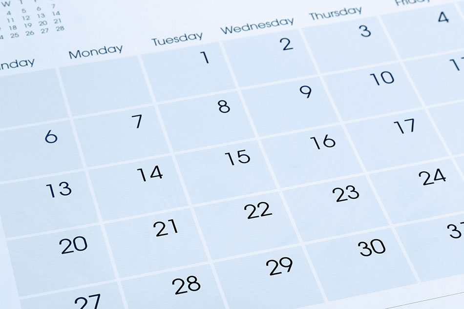 Monthly calendar to keep track of contacts replacement